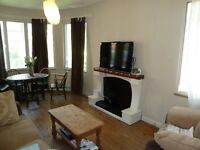 One Bedroom Apartment- Council Tax & Hot Water Included