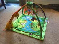Fisher price rainforest play gym