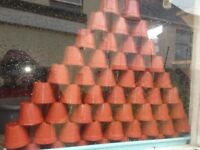 Small plant pots 50 pcs for £1 only.