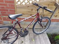 Raleigh Bicycle good condition