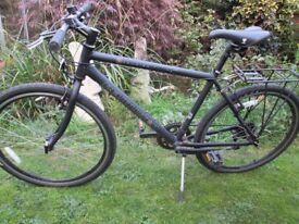 Revolution courier bike
