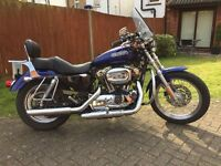 Harley Davidson XL 1200 Low Sporster in a nice Blue