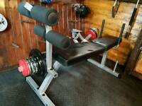 Body Solid AB crunch bench with 50 kg weights