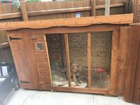 Dog house for sale good condiont