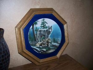 Collectible Plates & Frames - Wolves London Ontario image 2
