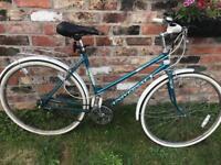 Ladies bike cheap bicycle