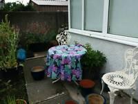 Tablecloth for garden table.