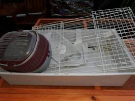 Indoor cage and carrier