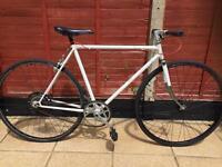 Single speed bike. Large size