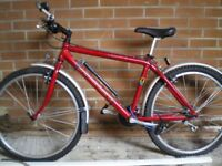 """Mans Mountain Bicycle,""""as brand new"""""""