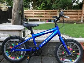 "16"" Ridgeback Mountain bike"