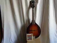 Guild Vintage Mandolin