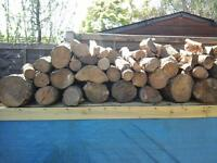 WANTED FREE LOGS, CORD WOOD