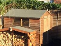 8x6 shed , great condition, collection only