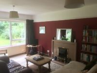 Double room in friendly household (Greenbank/Easton) 7th May - 15th July with possibility to extend