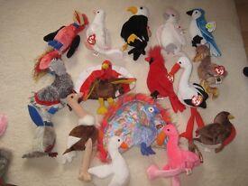 Ty Beanie Babies - Birds