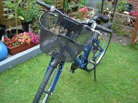 ladies shopping bike