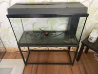 FISH TANK ON METAL STAND (FIRST £25 CAN TAKE IT)