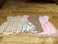 Next 12-18 months dresses