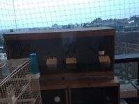 double breeder cage for sale