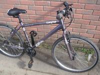 Apollo Cosmos Mountain Bike