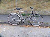 Classic Raleigh Cruiser Bike