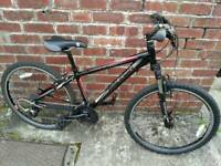 Raleigh adults mountain bike just serviced