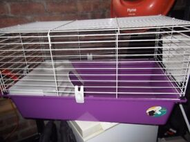 brand new guinea pig cage £20
