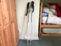 Scott Ski Racing Poles, Pole Protectors and Shin Guards