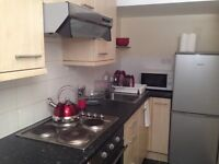 Large lovely studio double room available to students