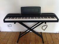 Korg SP-170 Digital Piano For Sale