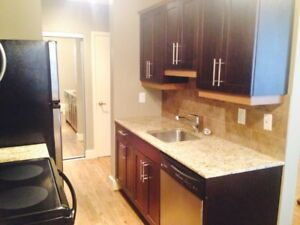 The York, 1 Bedroom Apartment Available October 1