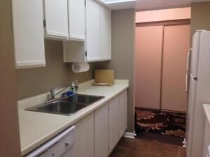 FURNISHED, INCLUSIVE DT CONDO! AMAZING LOCATION! 909-165 Ontario Kingston Kingston Area image 3