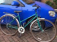 Barn find original Raleigh pioneer ladies bike