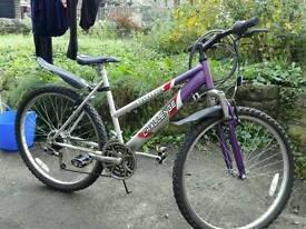 Purple ladies beautiful bike,free accessories
