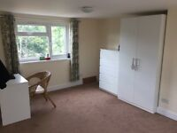 NEW Ensuite room with lots of storage, ideal for Couple