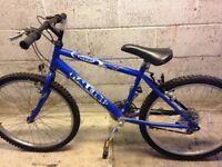 Raleigh Max 24inch wheel mountain bike