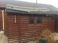 Large Wooden Garden shed for sale (COLLECTION ONLY PLEASE)