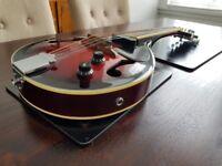 Stagg Electro-acoustic Mandolin