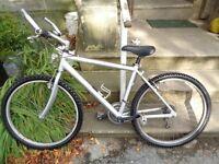 Silver full size adults mountain bike light weight