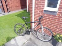 Man's Apollo XC26s mountain bike