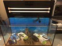 Fish tank 3ftx2ft including accessories