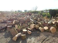 Truckload of unprocessed logs, cordwood, timber, firewood