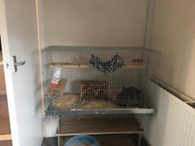 Degus, Rat, chinchilla cage