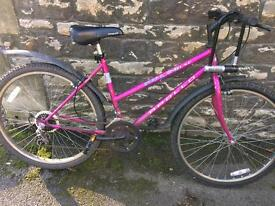 SERVICED APOLLO LADIES BIKE - FREE DELIVERY TO OXFORD!