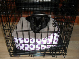 small dog or cat cage used once