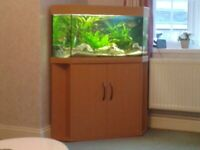 Fishtank and/or cabinet