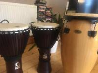 Toca Djembe drums x2 and 1 large Cosmic Percussion Conga drum