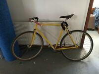 SINGLE SPEED MEDIUM FRAME BIKE