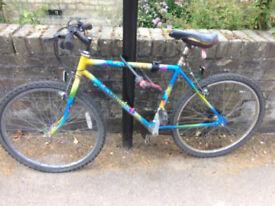 Cheap bike 20 pounds